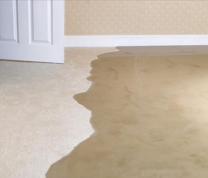 Water Damage Rely On SERVPRO To Restore Your Spokane Home After Water Damage